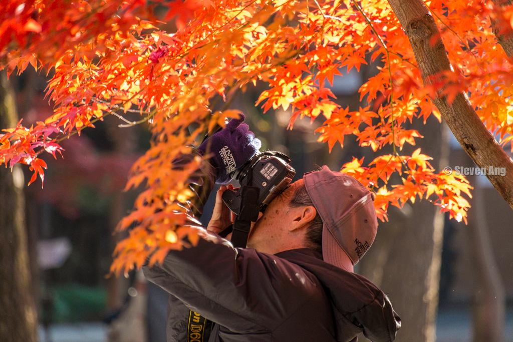 IMAGE: http://www.monk3y.com/img/s9/v97/p780612118-5.jpg